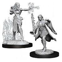 Vorbestellung - D&D/RPG: Nolzurs Marvelous Unpainted Miniatures: W13 Multiclass Warlock & Sorcerer Female