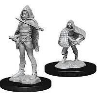 Vorbestellung - D&D/RPG: Nolzurs Marvelous Unpainted Miniatures: W13 Darkling Elder & Darklings